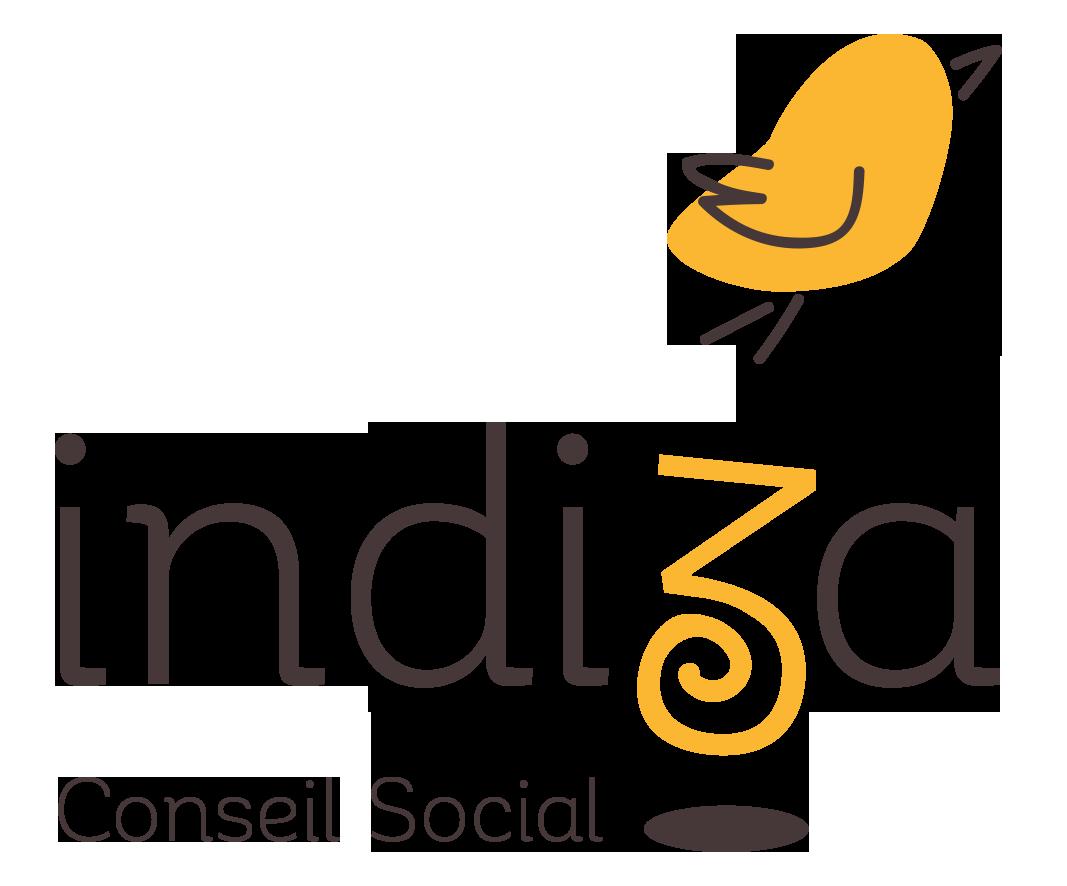 indiza conseil social landes - 1
